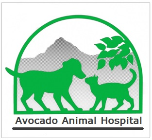 Avocado Animal Hospital